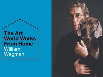 William Wegman in Artnet News