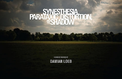 Damien Loeb Synesthesia, Parataxic Distortion, and the Shadow Catalogue Cover