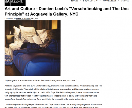 """Photograph of """"Art and Culture - Damian Loeb"""""""