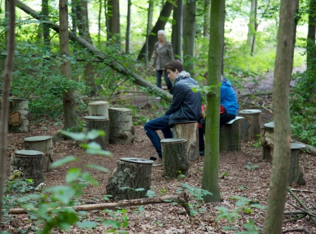 """Janet Cardiff and George Bures Miller """"FOREST (for a thousand years...)"""""""