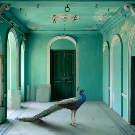 Karen Knorr - Europe and India