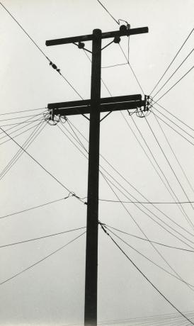 Ruth Bernhard, Telegraph Wires, c.1953-63