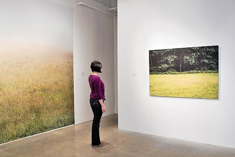 JESSICA AUER | MEADOW | INSTALLATION VIEW |PATRICK MIKHAIL GALLERY | OTTAWA | 2012