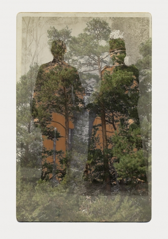 SARA ANGELUCCI | ARBORETUM (MAN/WOMAN/PINES) | PIGMENT PRINT ON ARCHIVAL PAPER | 31 X 44 INCHES | 2016