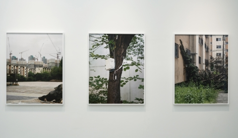 JINYOUNG KIM | APPARITIONS OF COLLECTIVE DISPOSITION | INSTALLATION VIEW | PATRICK MIKHAIL GALLERY | MONTRÉAL,