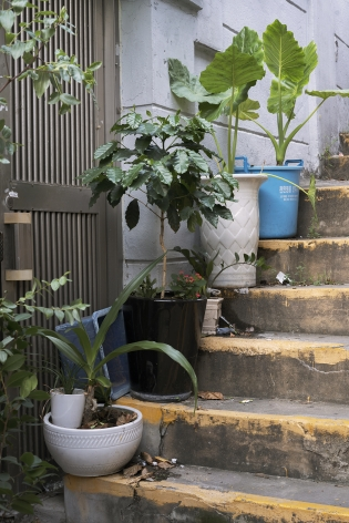 JINYOUNG KIM | SINDANG AREA 9, POTTED PLANTS ON THE STAIRS | C-PRINT MOUNTED ON DIBOND | 30 X 20 INCHES | EDITION 1 OF 5 | 2019