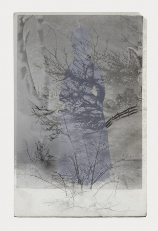 SARA ANGELUCCI | ARBORETUM (WOMAN/WINTER/FOREST) | IMPRESSION PIGMENTAIRE SUR PAPIER D'ARCHIVES | 34 X 24 POUCES | 2016