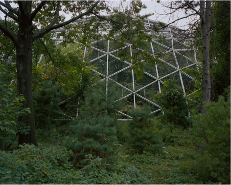 DANIEL BAUER, Aviary, Corona Park, Queens, 2005