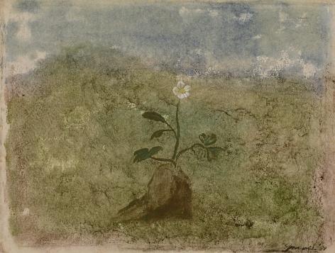 Morris Graves, Winter Flowers