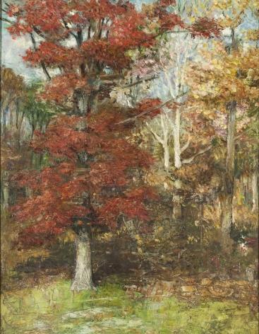 Edith Prellwitz, Fall Woods