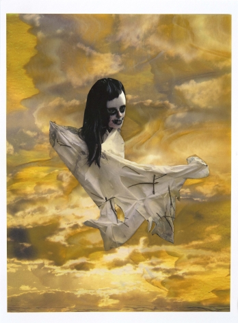 Golden Scarecrow, 2016, Collage on archival pigment print