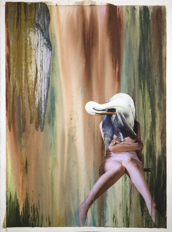 Becoming the White Heron, 2015