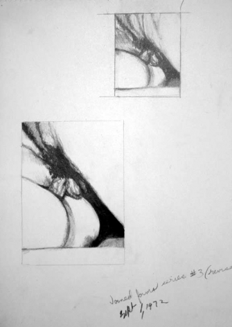 Betty Tompkins Fuck Drawing #3 revised, 1972