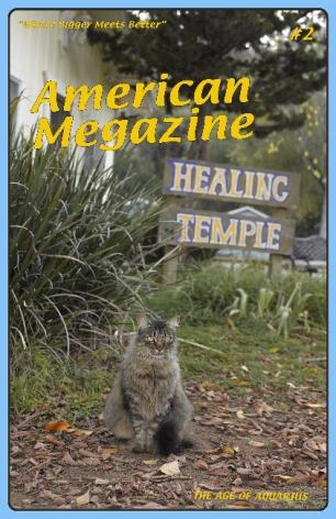 Lisa Anne Auerbach, American Magazine #2, 2014