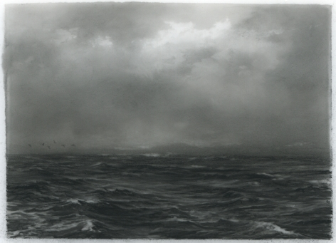 Dozier Bell, Sea smoke, flock, 2018