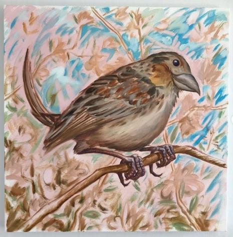 Ian Faden, Smirkey the Sparrow, 2019