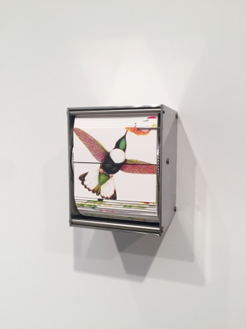 Ornithology P, 2015, color screen print, stainless steel motor & electronics, 5 x 4.25 x 3.75 in.