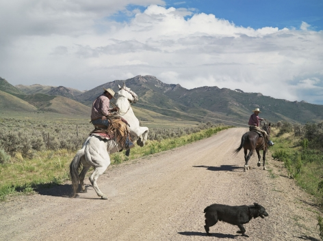 LUCAS FOGLIA, Casey and Rowdy Horse Training, 71 Ranch, Deeth, Nevada, 2012
