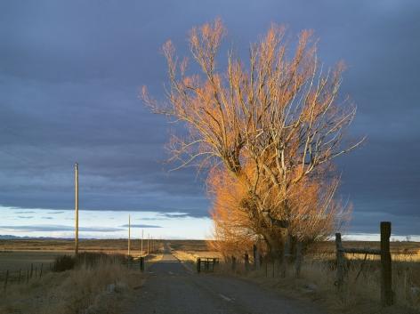 LUCAS FOGLIA, Driveway, 71 Ranch, Deeth, Nevada, 2012