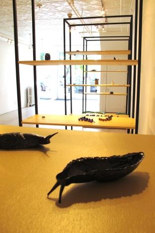 David Bielander Rare Species Exhibition
