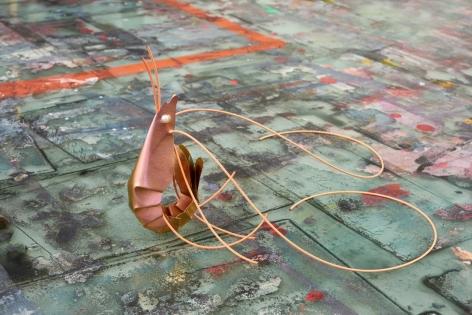 David Bielander, prawn, shrimp, titanium
