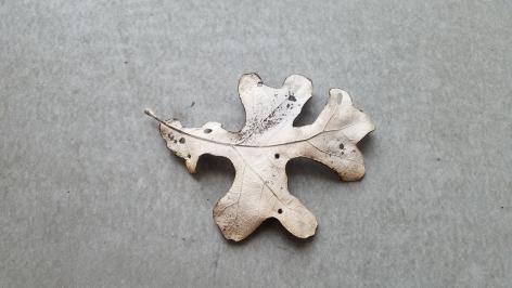 John Iverse Leaf Pin