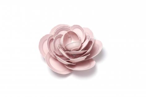 Rose, David Bielander
