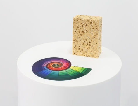 Sublimation Untitled (Sponge, Color Chart)