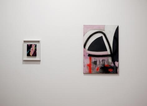 Thaiwijit Puengkasemsomboon and Sam Francis installation image