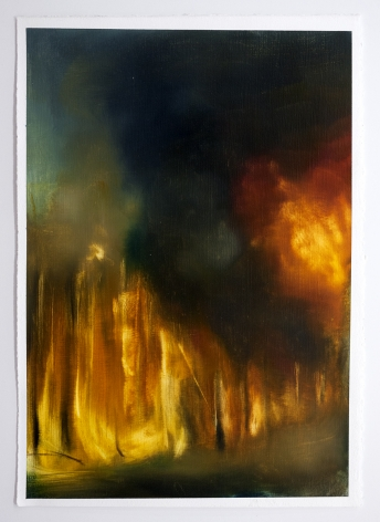 Karen Marston ​Forest Fire Study, 2013 Oil on paper