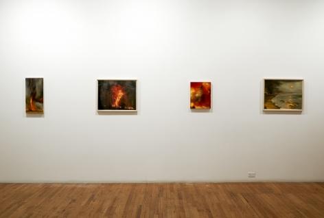 Karen Marston Fire Season installation view