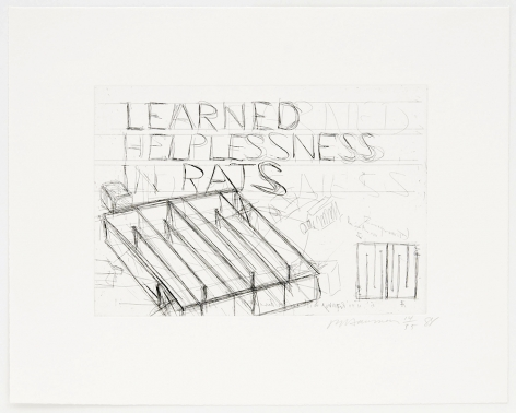 Bruce Nauman ​Learned Helplessness in Rats, 1988 Etching
