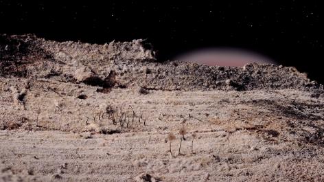 Myxo Desert