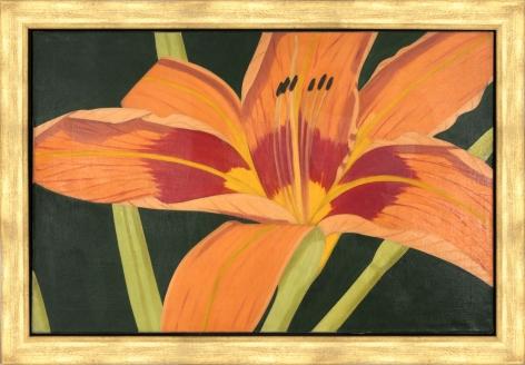 "Alex Katz_Tiger Lily, 1968 (31.7"" x 48.7"") Framed - Casterline|Goodman Gallery"