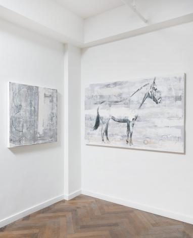 Danielle Procaccio: Healing Power of the Horse