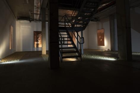 Exhibition View of Rebirth Franz Klainsek at Hg Contemporary Williamsburg