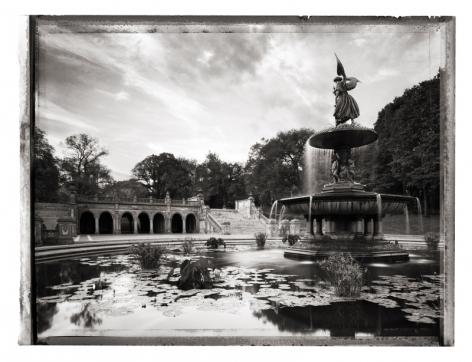 Christopher Thomas- Central Park
