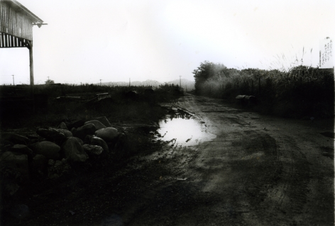 Daido Moriyama- Tokyo: A Sequel to a Following Story