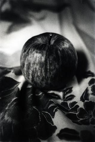 """Daido Moriyama  - A Journey to Nakaji 8: """"Room"""" (Apple)"""