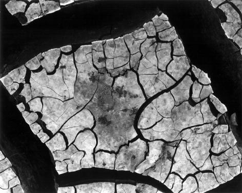 Brett Weston - Mud Cracks