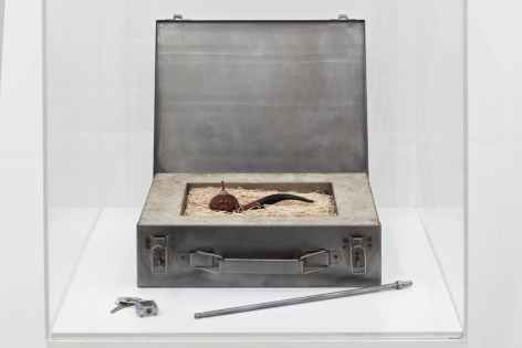 MEL CHIN, Elementary Object (For Corsica), 1993