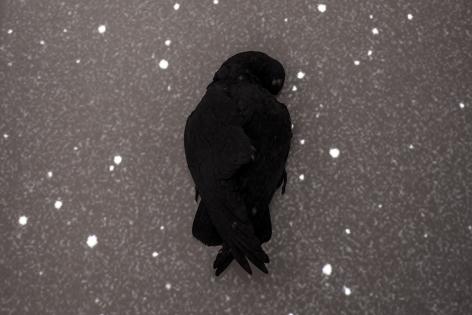 TI-ROCK MOORE, New Dark Night, 2017