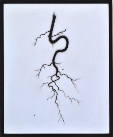 BRIAN BORRELLO Root, 2008