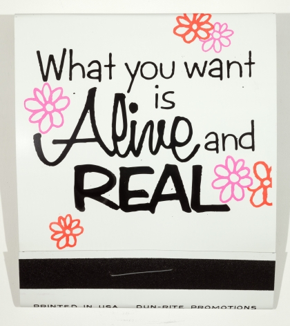 SKYLAR FEIN What You Want is Alive and Real,2014