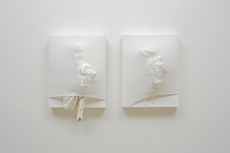 SIDONIE VILLERE January [diptych], 2015