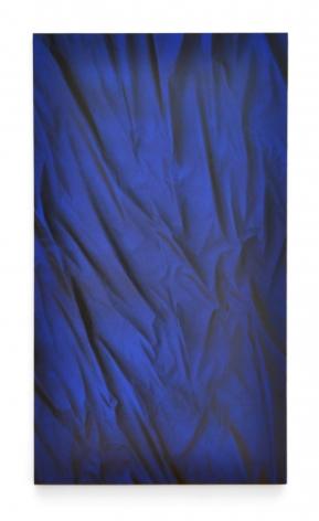 BONNIE MAYGARDEN Black and Blue Velvet, 2014