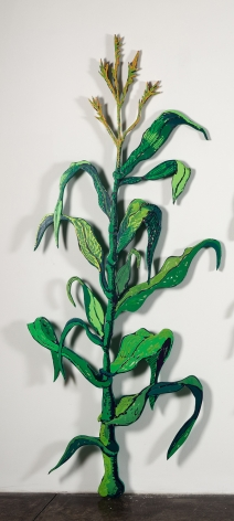 GINA PHILLIPS Cornstalk (June), 2014