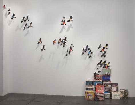 PAUL VILLINSKI Boxed Birds, 2010