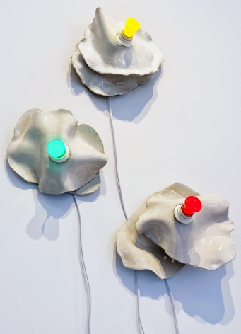 KRISTINA LARSON, Wall Flowers, 2020