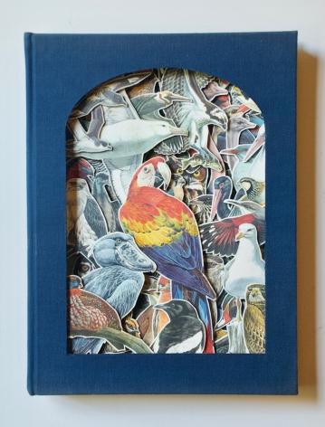 TONY DAGRADI, Birds Of The World, 2020